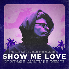 Show Me Love (Vintage Culture Remix)
